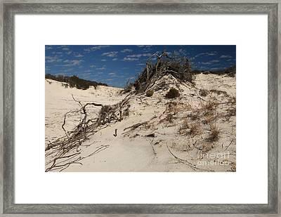 Snow White Dunes Framed Print by Adam Jewell