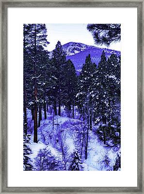 Snow Wonderful Snow Framed Print by Nancy Marie Ricketts