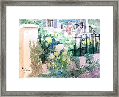 Snowballs In Summer Framed Print