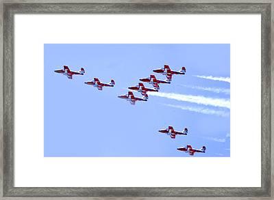 Snowbirds Framed Print by Frank Savarese