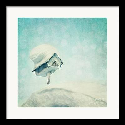 Birdhouse Framed Prints