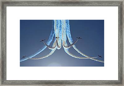 Snowbirds In A Dive Framed Print by Randy Hall
