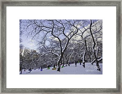 Snowboarders In Central Park Framed Print by Madeline Ellis