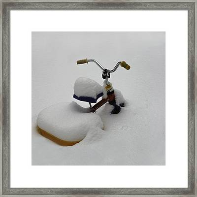 Snowbound Framed Print