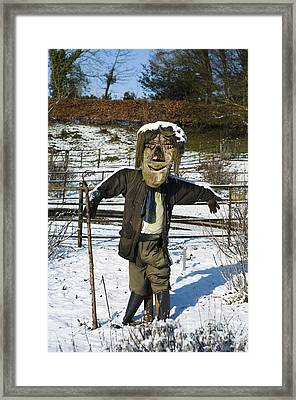 Snowcapped Scarecrow Framed Print by Anne Gilbert