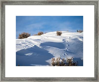 Snowdrifts Framed Print