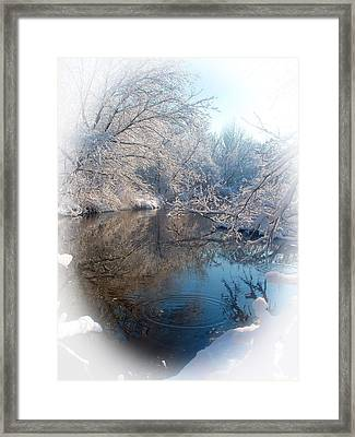 Snowdrops Framed Print by Teresa Schomig