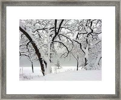 Snowfall Framed Print by A K Dayton