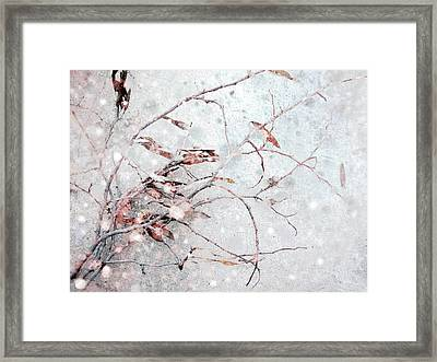 Snowfall On Branch Framed Print by Ann Powell