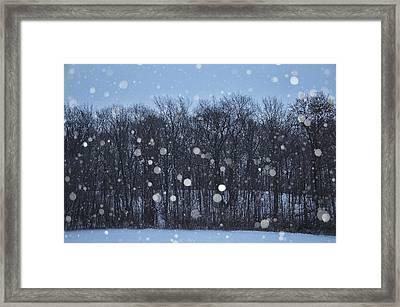 Snowfall Treeline Framed Print