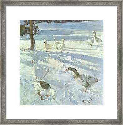 Snowfeeders, 1999 Oil On Canvas Framed Print by Timothy Easton