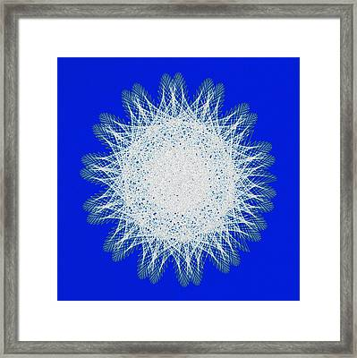 Snowflake Framed Print by Bill Cannon