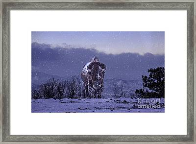 Snowflakes Falling On My Head Framed Print