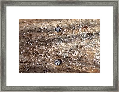 Snowflakes On Wood Framed Print by Barbara Giordano