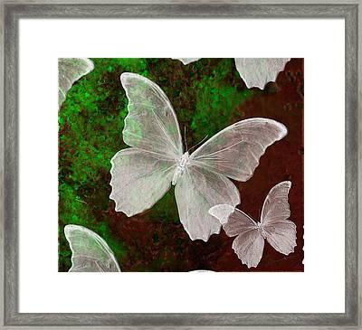 Snowflies Framed Print