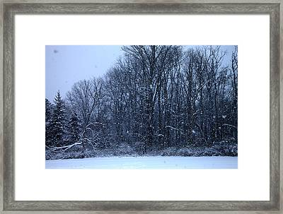 Snowing Framed Print by Barbara Giordano