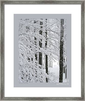Snowing In The Woods Framed Print