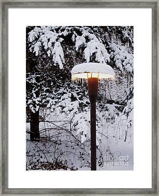 Snowlight Framed Print by Avis  Noelle