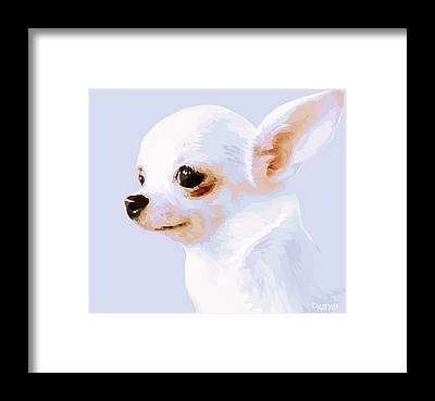 Chiwawa Portrait Framed Prints