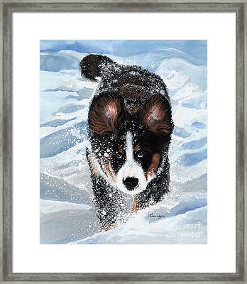 Snowplow Framed Print by Liane Weyers