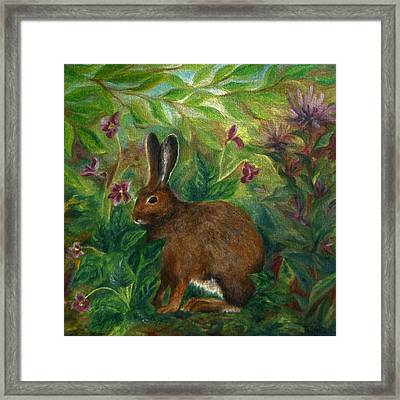 Snowshoe Hare Framed Print by FT McKinstry