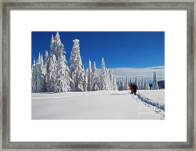 Snowshoers Under Bluebird Sky Framed Print