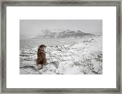 Snowstorm Framed Print by Bragi Ingibergsson -