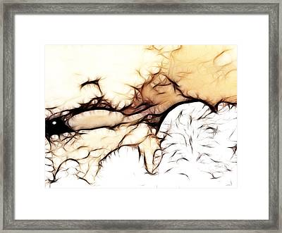 Snowstorms And Treetops Framed Print by Sharon Lisa Clarke
