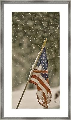 Snowy American Framed Print