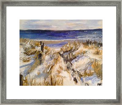 Snowy Beach Day Framed Print by Catherine Maroney