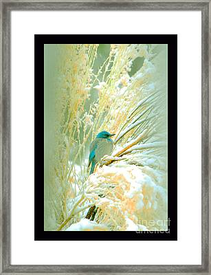 Snowy Chamisa In High Mountains Framed Print by Susanne Still