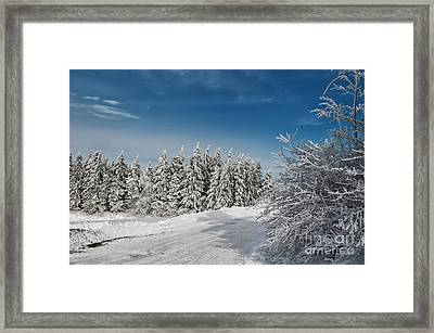 Snowy Country Lane Framed Print by Lois Bryan