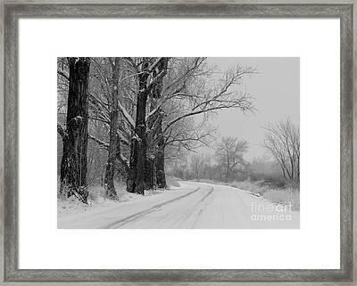 Snowy Country Road - Black And White Framed Print by Carol Groenen