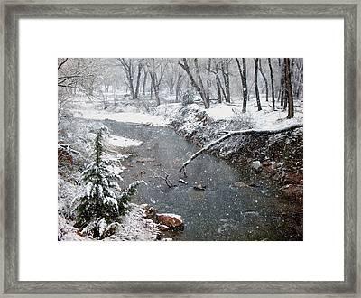 Snowy Creek Framed Print by Annie Adkins
