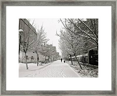 Snowy Day In Madrid Framed Print by Galexa Ch