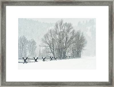 Snowy Day In The Tetons Framed Print by Sandra Bronstein
