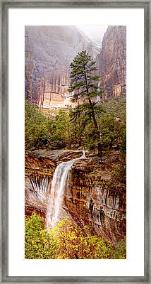 Snowy Day In Zion Framed Print