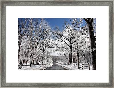 Snowy Day Framed Print by Jackie Novak
