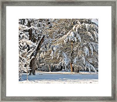 Framed Print featuring the photograph Snowy Day by Linda Brown