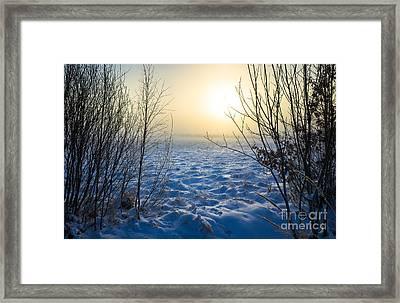 Snowy Dream Framed Print