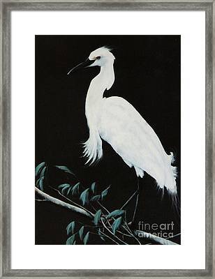 Framed Print featuring the painting Snowy Egret by DiDi Higginbotham