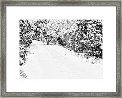 Snowy Entrance Framed Print by Roselynne Broussard