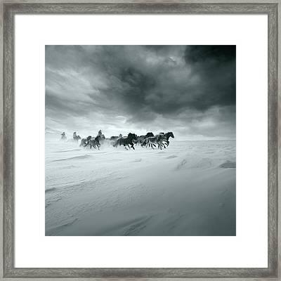 Snowy Field Framed Print