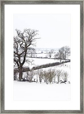 Snowy Fields Framed Print