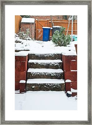 Snowy Garden Framed Print by Tom Gowanlock