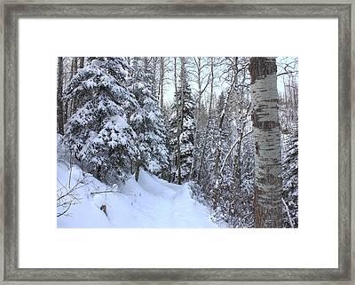 Snowy Hiking Trail Framed Print