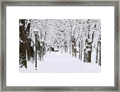 Snowy Lane In Winter Park Framed Print