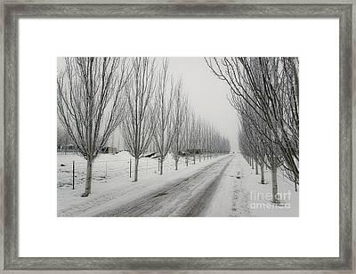Snowy Lane Framed Print