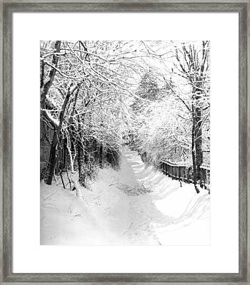 Snowy Lane Framed Print