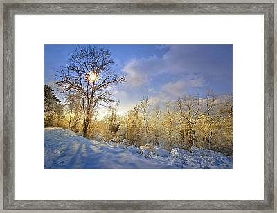 Snowy Morning Framed Print by Giovanni Allievi